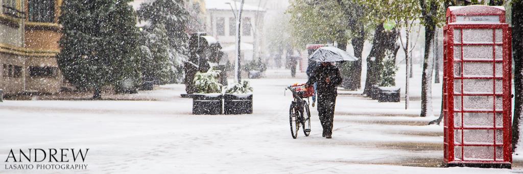 IMAGE: http://www.lasavio.com/images/potn/snow2.jpg